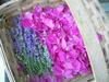 Rose_petals_n_lavender1
