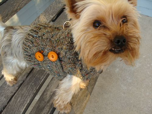 Mr. Jefferies' Peace Fleece Sweater #2