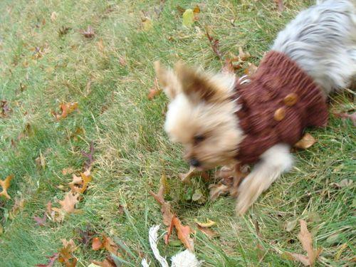 Mr. Jefferies' Peace Fleece Sweater